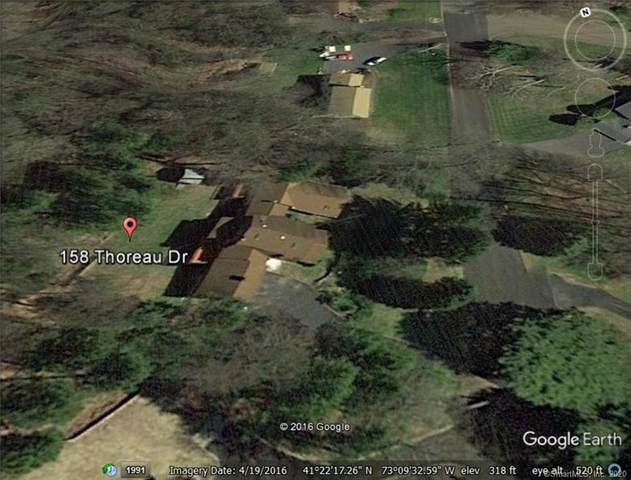 158 Thoreau Drive, Shelton, CT 06484 (MLS #170299525) :: Carbutti & Co Realtors