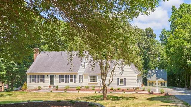 87 Olde Orchard Road, Clinton, CT 06413 (MLS #170313408) :: Spectrum Real Estate Consultants