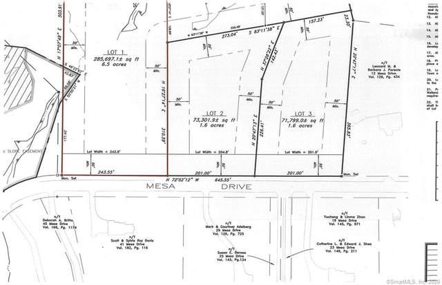 46/Lot 1 Mesa Drive, Bethany, CT 06524 (MLS #170316135) :: Mark Boyland Real Estate Team