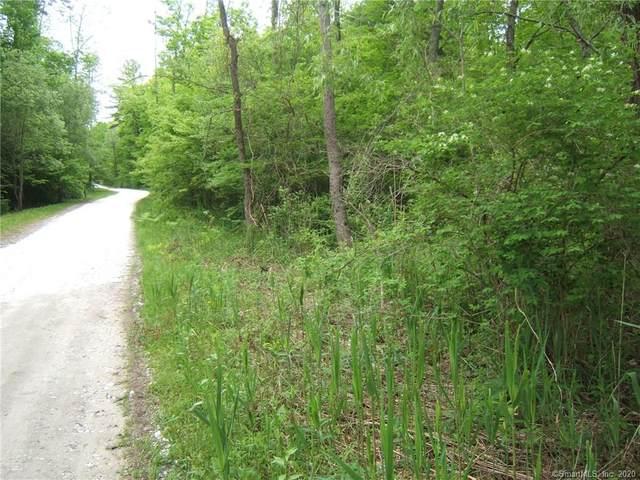 2 Birch Lane, Sharon, CT 06069 (MLS #170322865) :: Michael & Associates Premium Properties | MAPP TEAM