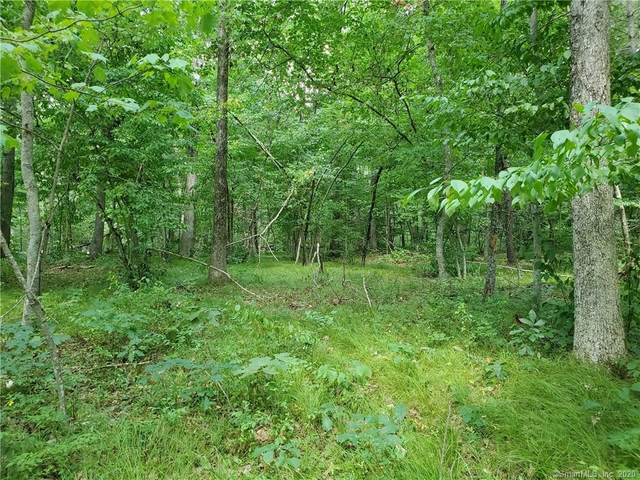 559 Brickhouse Road Extension, Killingly, CT 06239 (MLS #170323717) :: Sunset Creek Realty