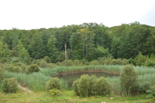 1 Ives (49 Acres) Court, Ridgefield, CT 06877 (MLS #170324118) :: Spectrum Real Estate Consultants