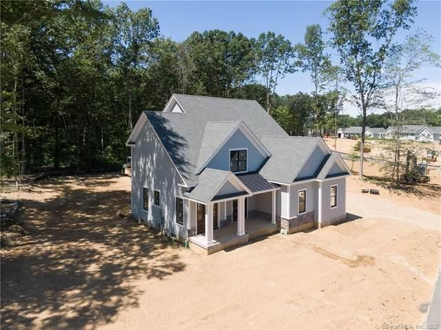 205 Edgewater Circle, East Hampton, CT 06424 (MLS #170324124) :: Michael & Associates Premium Properties | MAPP TEAM