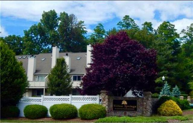 74 Willow Springs #74, New Milford, CT 06776 (MLS #170324783) :: Michael & Associates Premium Properties | MAPP TEAM