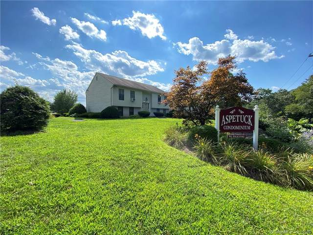 49 Aspetuck Village #49, New Milford, CT 06776 (MLS #170325922) :: Around Town Real Estate Team