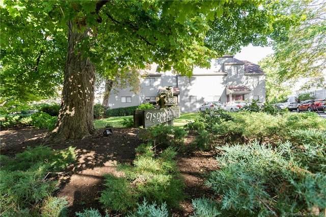 188 Flax Hill Road B3, Norwalk, CT 06854 (MLS #170330149) :: Sunset Creek Realty