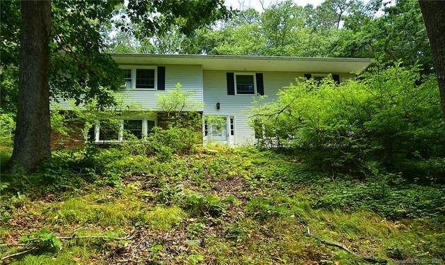 27 Mulberry Road, Mansfield, CT 06250 (MLS #170330306) :: Michael & Associates Premium Properties | MAPP TEAM