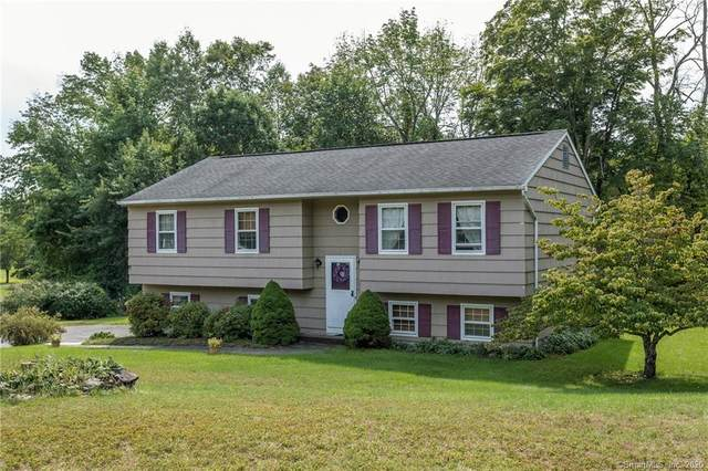 61 Meadowland Drive, New Milford, CT 06755 (MLS #170334829) :: Frank Schiavone with William Raveis Real Estate