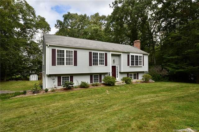 20 Hills Avenue, East Hampton, CT 06424 (MLS #170336859) :: Anytime Realty