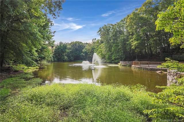 50 Aiken Street #202, Norwalk, CT 06851 (MLS #170338496) :: Sunset Creek Realty