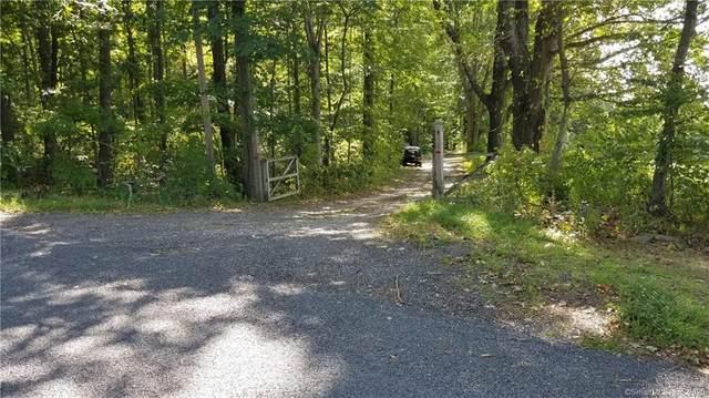 191 W Mountain Road, Washington, CT 06793 (MLS #170339208) :: Around Town Real Estate Team