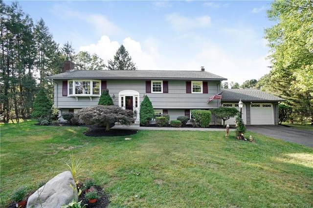 308 Reeds Gap Road, North Branford, CT 06472 (MLS #170339776) :: Team Phoenix