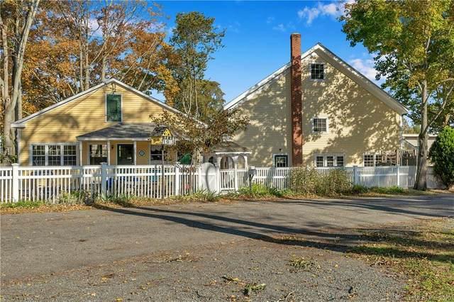 45 Sherwood Terrace, Old Saybrook, CT 06745 (MLS #170343173) :: Carbutti & Co Realtors