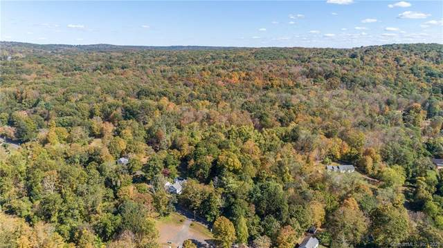 2C Long Hill Rd (Rear), East Hampton, CT 06424 (MLS #170344102) :: Spectrum Real Estate Consultants