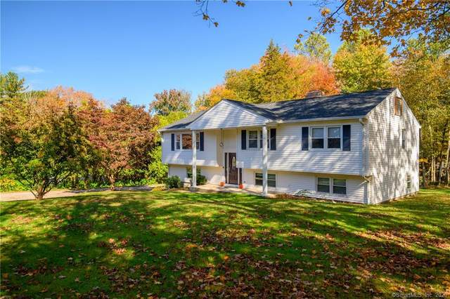 123 Toddy Hill Road, Newtown, CT 06482 (MLS #170347194) :: Kendall Group Real Estate | Keller Williams