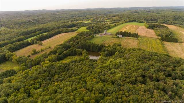 00 Town Farm Road, Litchfield, CT 06759 (MLS #170347667) :: Spectrum Real Estate Consultants