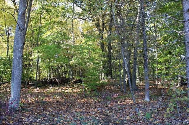 Lot 2 Meadow Street, Shelton, CT 06484 (MLS #170348074) :: Kendall Group Real Estate | Keller Williams
