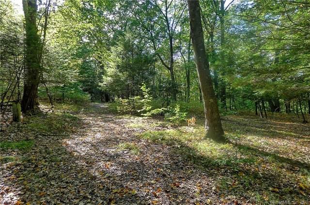 33 Woodcock Trail, Monroe, CT 06468 (MLS #170349317) :: Galatas Real Estate Group