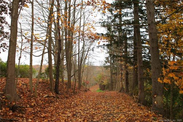 225 Little City Road, Haddam, CT 06438 (MLS #170349998) :: Around Town Real Estate Team