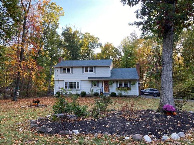 172 Haynes Road, Avon, CT 06001 (MLS #170350142) :: Forever Homes Real Estate, LLC