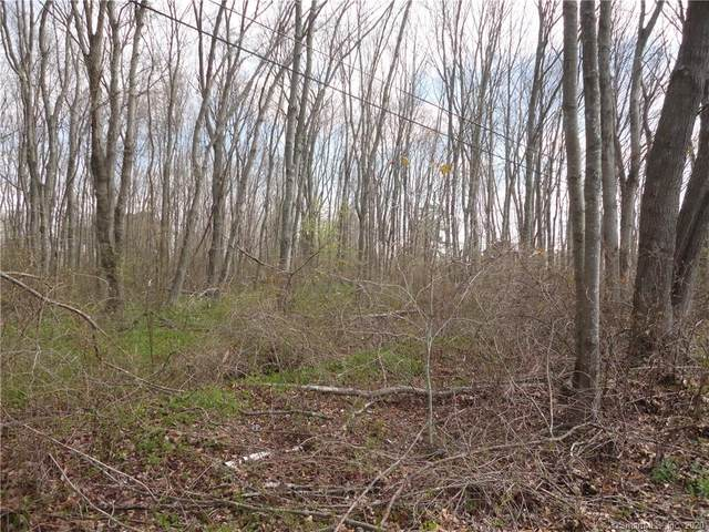 Lot 1 Westchester Road, Colchester, CT 06415 (MLS #170351729) :: Forever Homes Real Estate, LLC