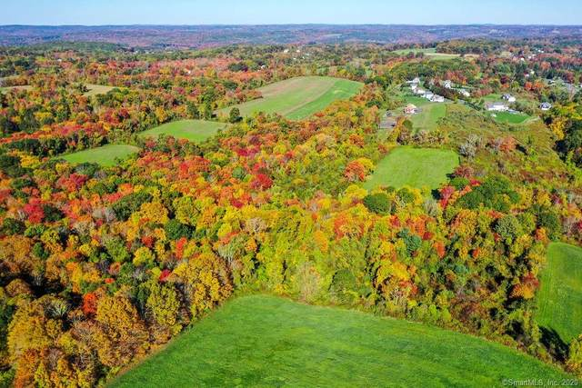 311 Burr Hall Road, Middlebury, CT 06762 (MLS #170353257) :: Forever Homes Real Estate, LLC
