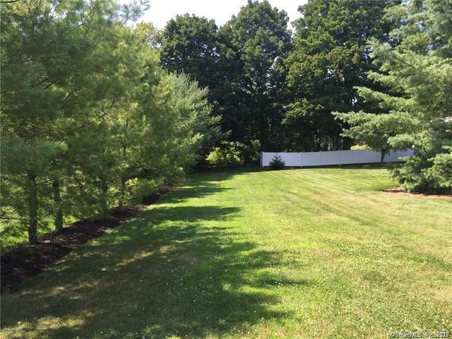 10A Patrick Drive, Seymour, CT 06483 (MLS #170354443) :: Around Town Real Estate Team