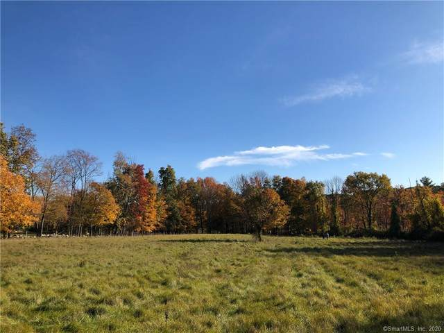 000 Sharon Mountain Road, Sharon, CT 06069 (MLS #170354462) :: Carbutti & Co Realtors