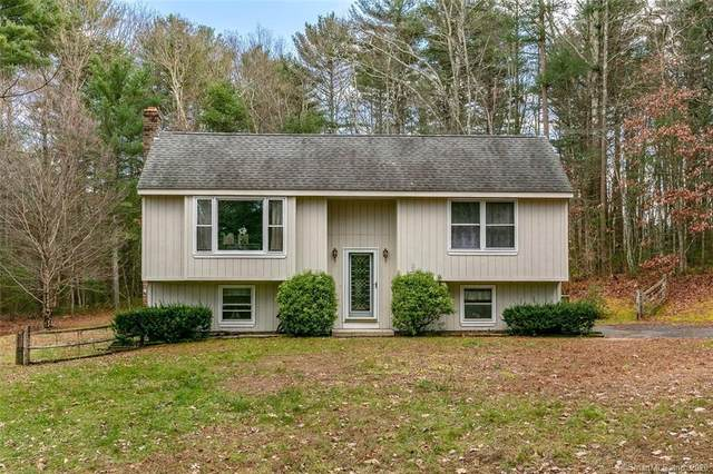 73 Navratil Road, Willington, CT 06279 (MLS #170355513) :: Around Town Real Estate Team