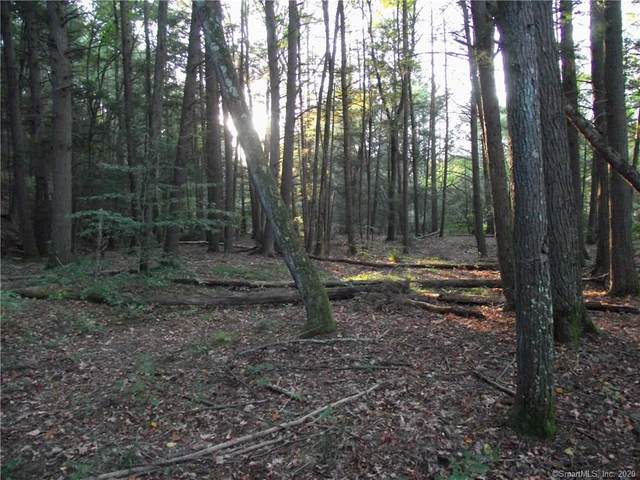 Lot 17 Shailor Hill Road, Colchester, CT 06415 (MLS #170356653) :: Forever Homes Real Estate, LLC