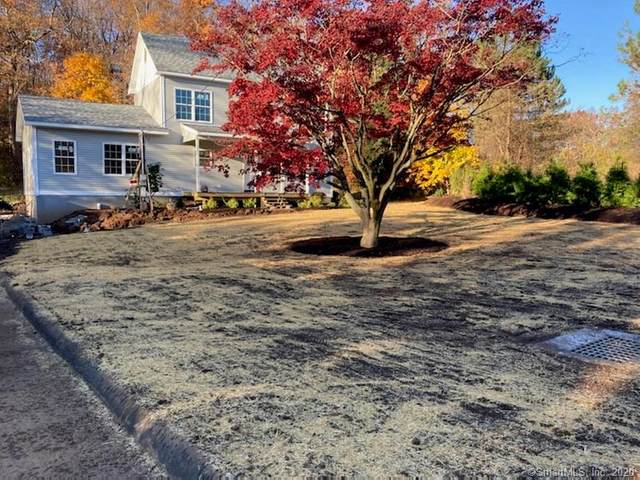 46 Todds Hill Road, Branford, CT 06405 (MLS #170356801) :: Sunset Creek Realty