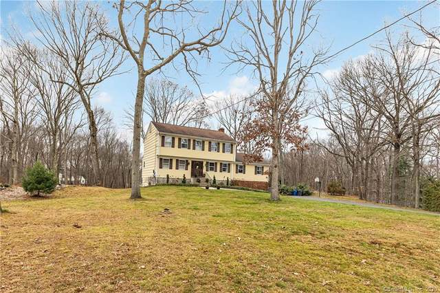 17 Moose Hill Road, Trumbull, CT 06611 (MLS #170358090) :: The Higgins Group - The CT Home Finder