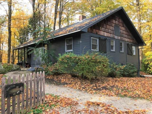 199 Route 7 S, Canaan, CT 06031 (MLS #170358239) :: Carbutti & Co Realtors