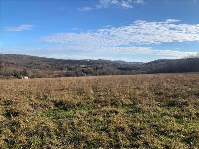 00 Anderson Road, Sherman, CT 06784 (MLS #170359622) :: Forever Homes Real Estate, LLC