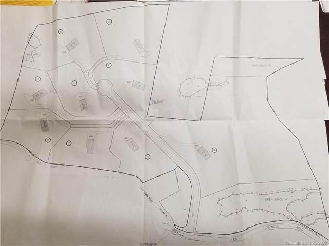 219 Great Plain Road, Danbury, CT 06811 (MLS #170359900) :: Sunset Creek Realty