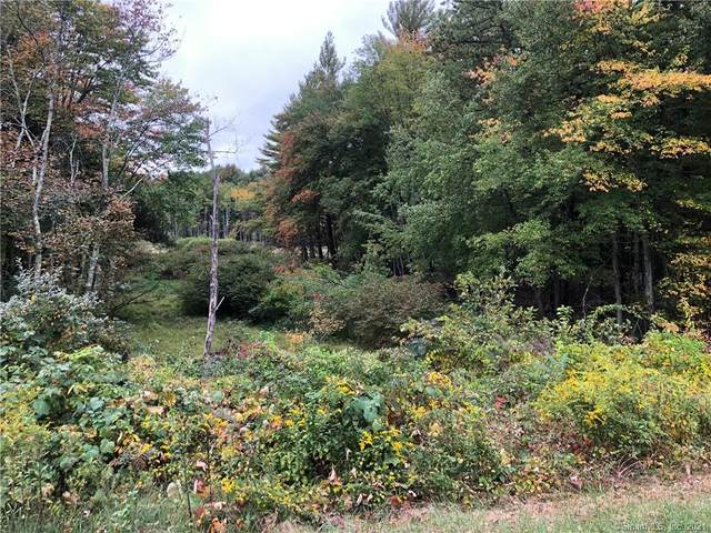 61 Brighton Drive, East Granby, CT 06026 (MLS #170363501) :: NRG Real Estate Services, Inc.