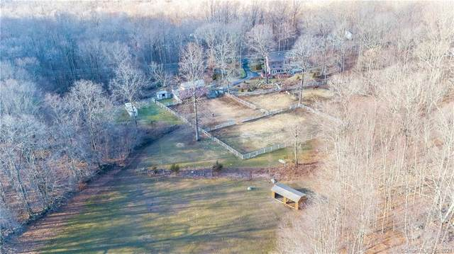 502 Mount Parnassus Road, East Haddam, CT 06423 (MLS #170364051) :: GEN Next Real Estate