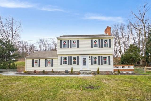 169 Quassapaug Road, Woodbury, CT 06798 (MLS #170364112) :: Tim Dent Real Estate Group