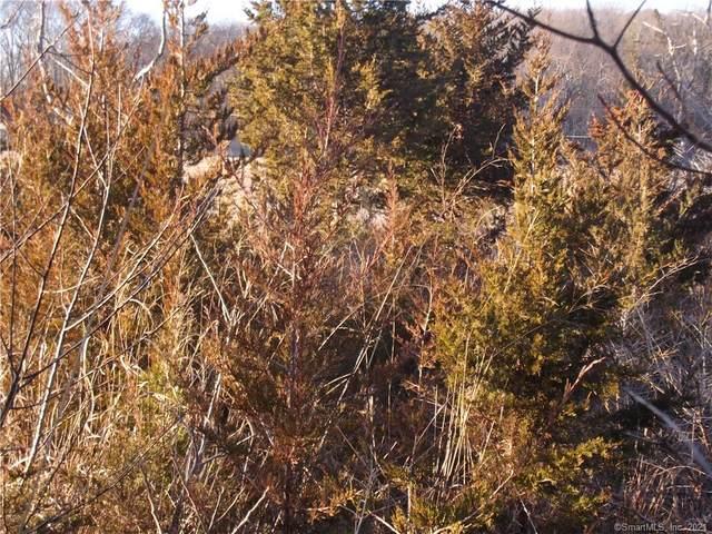 0 Hammock Road N, Westbrook, CT 06498 (MLS #170364317) :: Sunset Creek Realty