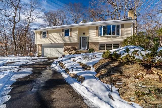 35 Cold Spring Circle, Shelton, CT 06484 (MLS #170364474) :: Around Town Real Estate Team