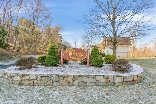93 Chestnut Street C, Bethel, CT 06801 (MLS #170367272) :: Around Town Real Estate Team