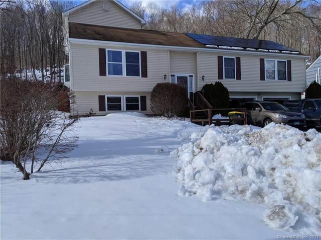 16 Reichelt Terrace, Ansonia, CT 06401 (MLS #170372769) :: Around Town Real Estate Team