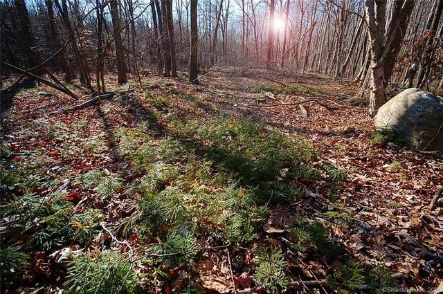 48 Judd Hill Road Lot 3A, Bethany, CT 06524 (MLS #170373685) :: Tim Dent Real Estate Group