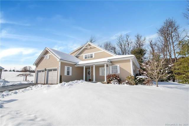 9 White Birch Bend #9, Portland, CT 06480 (MLS #170375126) :: Next Level Group