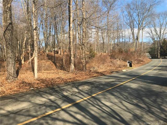 56 Codfish Hill Road, Bethel, CT 06801 (MLS #170376132) :: Around Town Real Estate Team