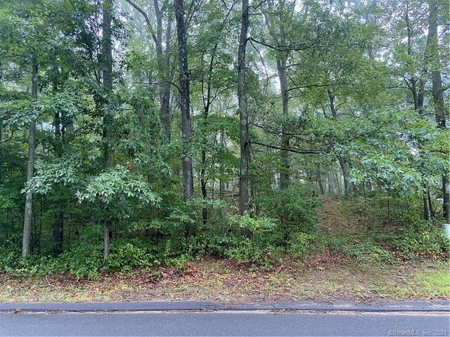 121 Silver Springs Drive, Haddam, CT 06441 (MLS #170377201) :: Anytime Realty