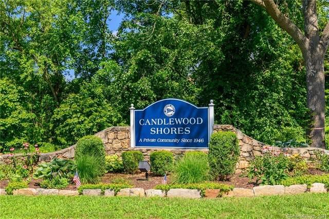 50 N Lake Shore Drive, Brookfield, CT 06804 (MLS #170378890) :: Carbutti & Co Realtors