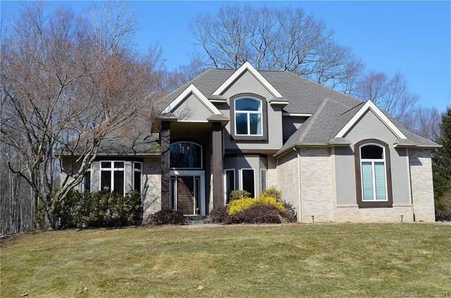 5 Garnet Lane, New Milford, CT 06776 (MLS #170378968) :: Spectrum Real Estate Consultants