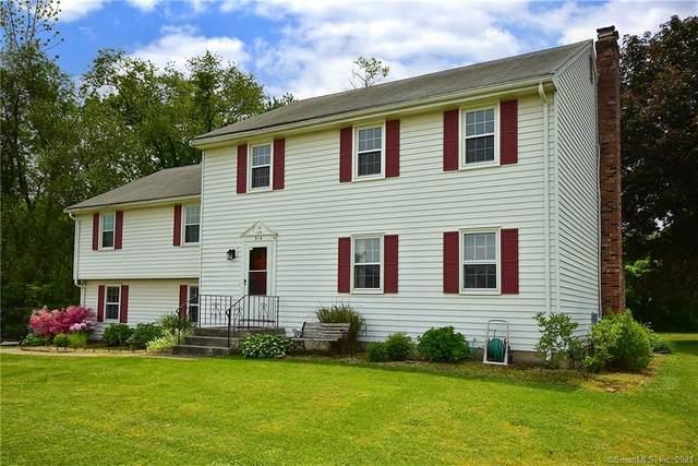 314 Hang Dog Lane, Wethersfield, CT 06109 (MLS #170379350) :: Spectrum Real Estate Consultants