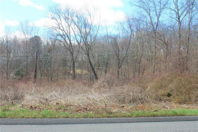 100 Rooster Tail Hollow, New Milford, CT 06776 (MLS #170380572) :: Team Phoenix